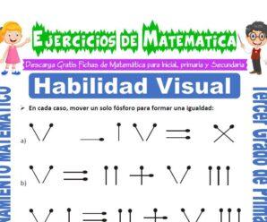 Ejercicios de Habilidad Visual para Tercero de Primaria