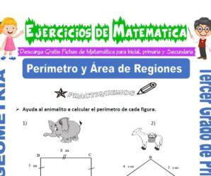 Ejercicios de Perímetro y Área de Regiones para Tercero de Primaria