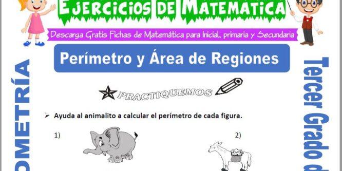 Perímetro y Área de Regiones para Tercero de Primaria